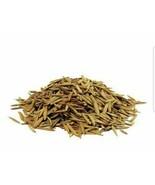 Organic Indrajav Anderjav Whole Raw Herbal Seed Holarrhena Conesi Seeds 50g - $21.49