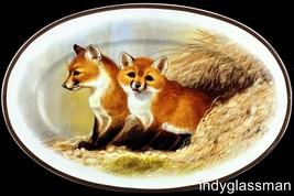 National Wildlife Federation AMERICAN WILDERNESS FOX Oval Platter 50% OFF - $24.96