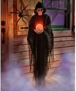 Halloween Trick or Treat Skeleton Reaper Black flowing Robe - $70.00
