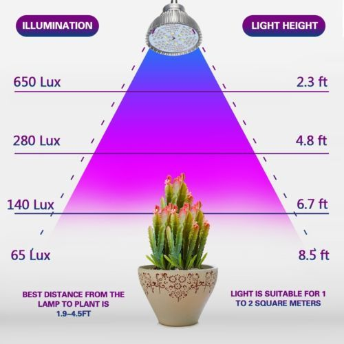 LED Grow Light By Aokey Profession Plant Lamp   True 15W Desk Clamp Lamp With