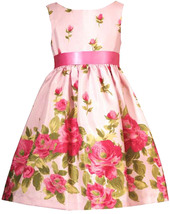 Rare Editions Little Girl 2T-6X Pink Rose Floral Border Shantung Dress