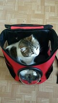 Breathable Astronaut Capsule Pet Cat Puppy Travel Bag Space Backpack Car... - $40.11