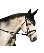 Equine Horse Fly Veil with Noise Reducing Ears - Black, Hunter Green, Ro... - $26.50