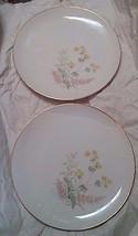 "2 Hutschenreuther Selb LHS Bavaria 10.25"" Dinner Plates Floral Pattern P... - $18.68"