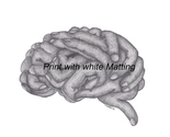 Brain hands 55   copy print with white matting thumb155 crop