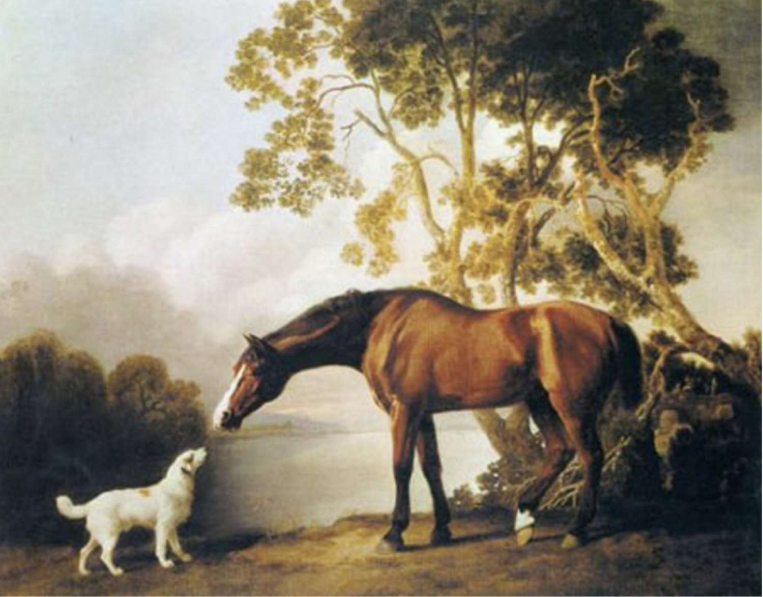 Primary image for Bay horse and White Dog-Friends-painting by George Stubbs 11x14 Canvas Print