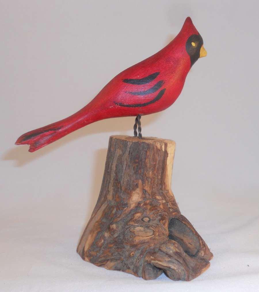 Cardinal1a