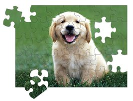 Melissa & Doug Golden Retriever Puppy Cardboard Jigsaw Puzzle - 30 Piece - $10.99