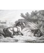 AESOP FABLES Animals Horse & Wild Boar - 1811 Original Etching Print - $30.60
