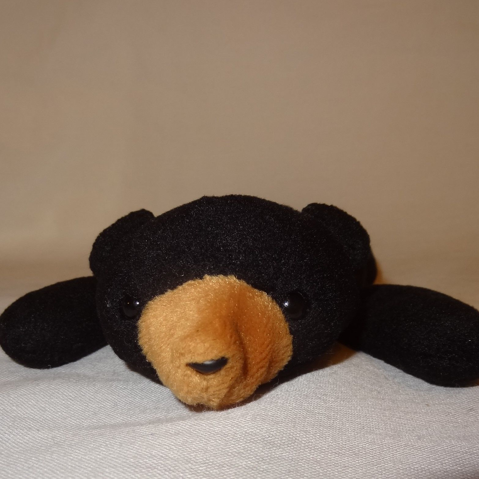 63b6e43ff0a Black Bear Ty Beanie Baby Blackie Plush and 17 similar items