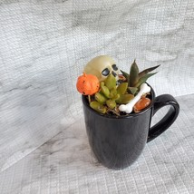 Halloween Planter with Live Succulents, Mug Garden, Skull Halloween fairy garden image 6