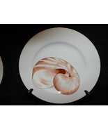Fitz & Floyd Coquille dinner plate C - $15.79