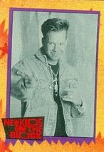 Vital Statistics - Donnie Wahlberg trading card (New Kids on the Block) ... - $4.00