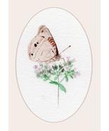 """Buckeye-to-Eye,"" A. Rose Designs note card - $5.95+"