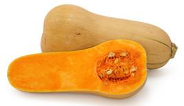 Waltham Butternut squash 50 seeds Heirloom Non GMO - $5.00