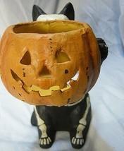 Bethany Lowe Skeleton Cat Candle Holder image 2