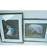 "Lot of 2 Framed & signed photos Egrets on Edisto Island  18"" x 22"" Beach... - $70.13"