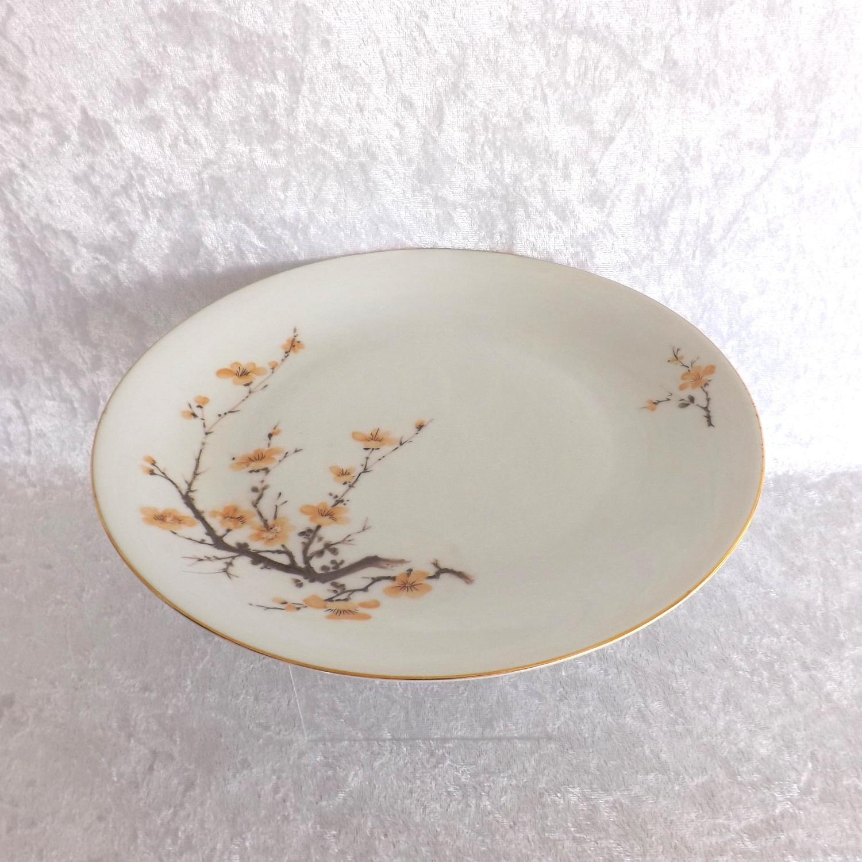 "Bareuther Waldsassen 10"" Dinner Plate Bavaria Pattern Fine China (Germany)"