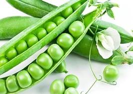 Bean Seeds 50g Sugar Snap Peas Pole Pisum Sativum Fava Garden Vegetable ... - $8.74