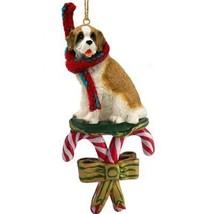 Conversation Concepts Saint Bernard W/Rough Coat Candy Cane Ornament - $15.99