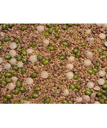SHIP From US, 96K Seeds 1 lb Mix Salad Sprouting Microgreens, DIY  ZJ01 - $100.41