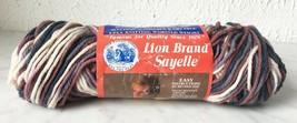 Vintage Lion Brand Sayelle Orlon Acrylic Yarn - 1 Skein Chelsea Ombre #281 - $6.60