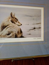 Up Close (Tundra Wolf)  Sue Coleman 1988 Art Work Print Framed Matted Gold Frame image 3