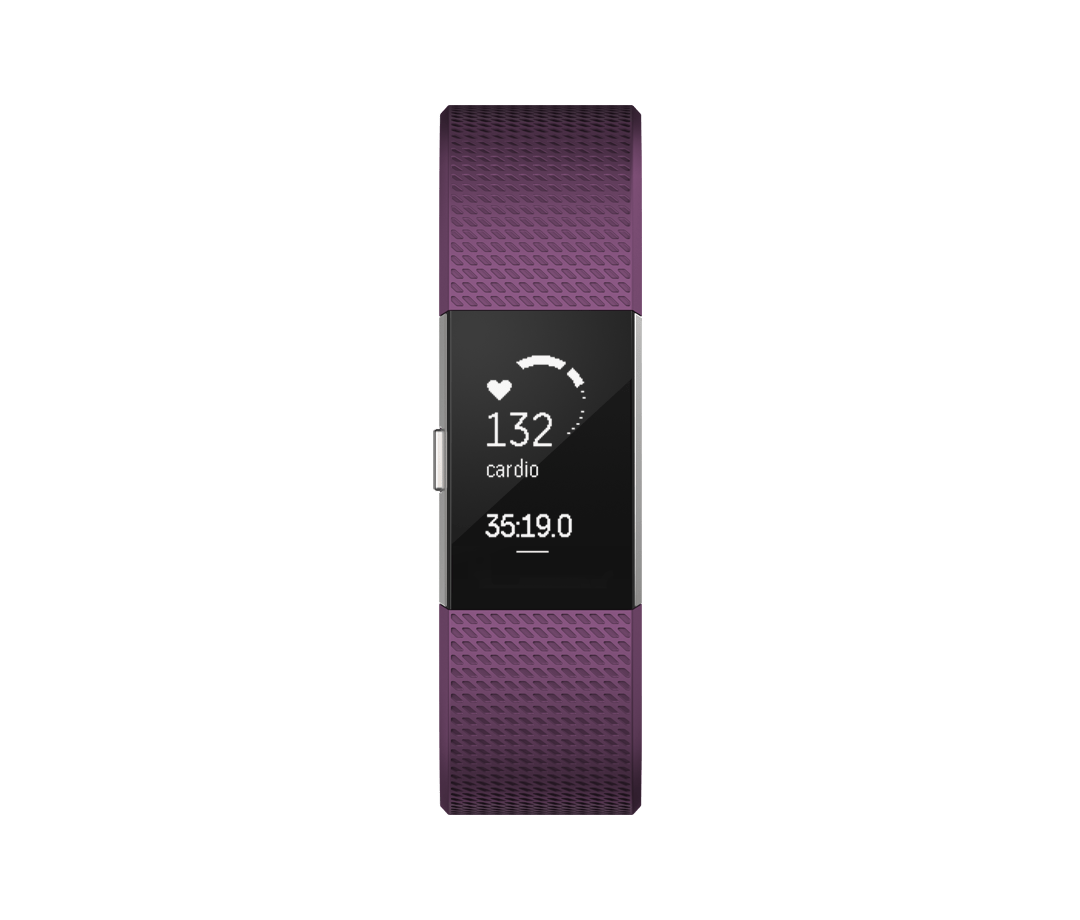 Fitbit Charge 2 (Activity Tracker Only) Heart Rate Fitness Watch Sale Cheap