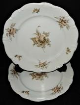"""2 Johann Haviland Bavaria Germany China Dinner Plates Sepia Rose Gold Trim 10"""" - $32.66"""