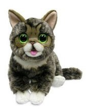 Lil' Bub Plush Cat  by Cuddle Barn  - $24.70
