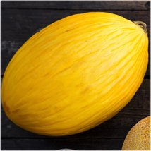 Package of 100 Seeds, Canary Melon (Cucumis melo) - $3.50