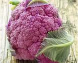 81c2k1kyshl_thumb155_crop