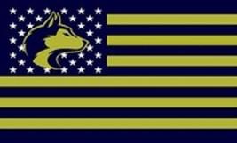 NCAA Washington Huskies Stars & Stripes 3'x5' Indoor/Outdoor Team Nation... - $9.99
