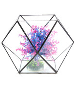 Polygon Greenhouse Glass Terrarium DIY Micro Landscape Succulent Plants ... - £46.77 GBP