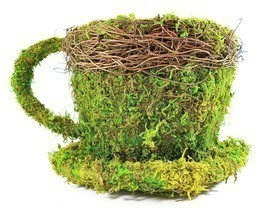 Real Moss Covered Coffee Cup/Saucer Planter - $12.60 CAD