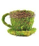 Real Moss Covered Coffee Cup/Saucer Planter - $9.85