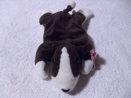 "TY Beanie Baby ""Bruno"" The Dog - With Tag 1997 - $14.99"