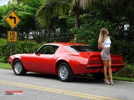 1974 Pontiac Formula Firebird 455 | 24 X 36 inch poster  - $18.99
