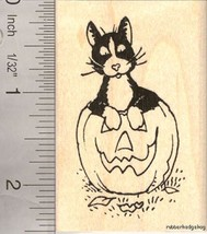 Black and White Cat in Halloween Pumpkin Rubber... - $13.95
