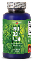Blue Green Algae 500mg 60 Capsules From Klamath Lake (1 Bottle) - $13.06