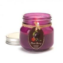 Plum Berry Mason Jar Candle (pack of 1 EA) - $4.15