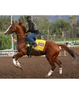 8x10 color photo - CALIFORNIA Chrome - $20.00
