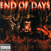 End of Days by Limp Bizkit and Guns N' Roses cd - $8.50