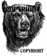 BLACK BEAR FACE new mounted rubber stamp NEW RELEASE!
