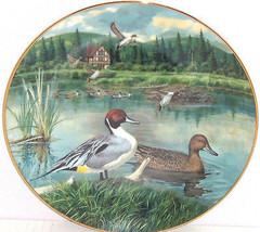 Pintail Living Nature Jerners Ducks Lake Collec... - $49.95