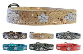 DRAGON SKIN GENUINE LEATHER Dog Collar * Silver Flower Puppy Love Charms - €14,05 EUR+