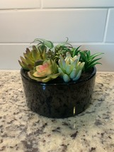 Pure garden artificial plants with cactus  - $32.00