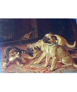 RARE-ANTIQUE-HORATIO COULDERY-SWEET PUG PUPPIES,KITTENS - $88.00