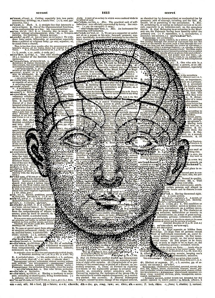 PHRENOLOGY HUMAN HEAD Diagram Vintage Dictionary Page Art Print No. 0087