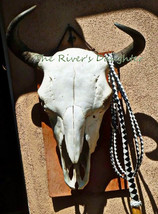 Buffalo Skull on Adobe, Southwest Art, Matted 4x6 Photograph, Original Art - $16.00